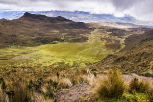 Ruminahui Volcano Valley, Cotopaxi National Park, Avenue of Volcanoes, Ecuador, South America by Matthew Williams-Ellis