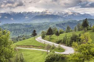 Rural Countryside and Carpathian Mountains Near Bran Castle at Pestera, Transylvania, Romania by Matthew Williams-Ellis