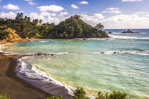 Sandy Beach on Tutukaka Coast, Northland Region, North Island, New Zealand, Pacific by Matthew Williams-Ellis
