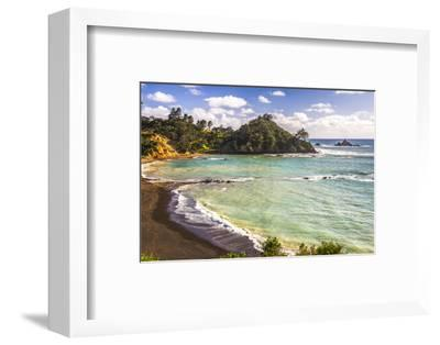 Sandy Beach on Tutukaka Coast, Northland Region, North Island, New Zealand, Pacific