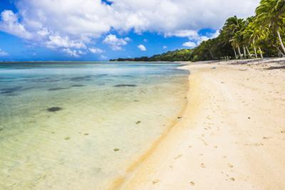 Tropical Beach in Muri Area of Rarotonga, Cook Islands, South Pacific, Pacific by Matthew Williams-Ellis