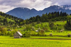 Typical Slovenian Landscape Between Lake Bled and Lake Bohinj by Matthew Williams-Ellis