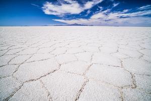 Uyuni Salt Flats Patterns Landscape (Salar De Uyuni), Uyuni, Bolivia, South America by Matthew Williams-Ellis