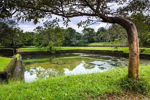 Water Gardens at Sigiriya Rock Fortress (Lion Rock) by Matthew Williams-Ellis