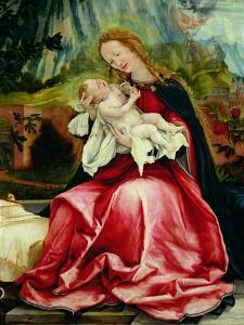 The Virgin and Child, from the Isenheim Altarpiece, circa 1512-16 by Matthias Grünewald