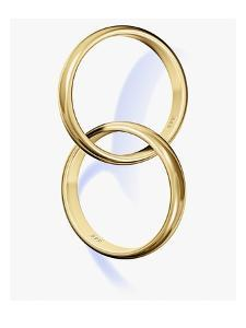 Two interlocked wedding rings by Matthias Kulka