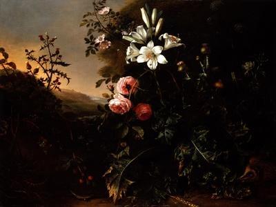 Still Life, C.1670