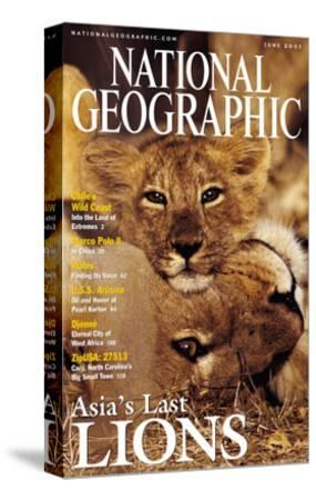 Cover of the June, 2001 National Geographic Magazine