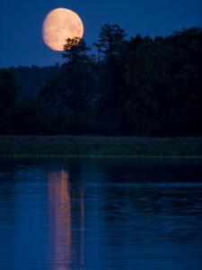 Moon Light Reflecting in Calm Lake Water by Mattias Klum