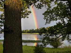 Rainbow over Water and Forest in the Summer by Mattias Klum