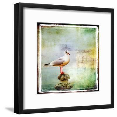 Sea Gull-Artistic Retro Styled Picture