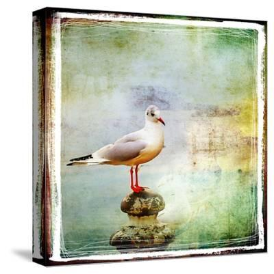 Sea Gull-Artistic Retro Styled Picture