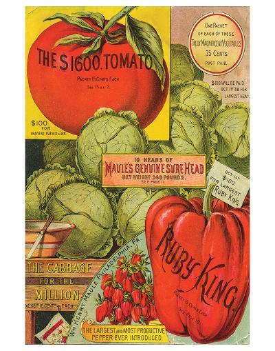 Maule Seed Book Philadelphia--Art Print