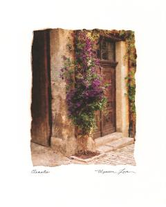 Clematis by Maureen Love