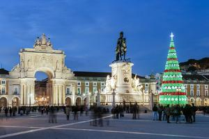 The traditional Christmas tree at Terreiro do Paco, the historic centre of Lisbon. Portugal by Mauricio Abreu