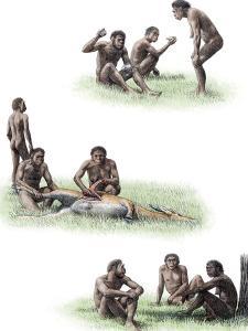 Homo Ergaster Behaviour by Mauricio Anton