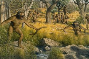 Painting Depicting Australopithecus Robustus Defending Territory by Mauricio Anton
