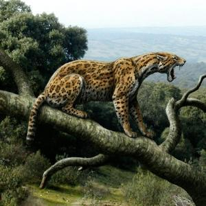 Promegantereon Sabre-tooth Cat, Artwork by Mauricio Anton