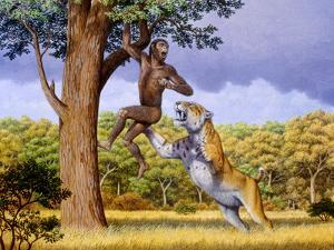 Scimitar Cat Attacking a Hominid by Mauricio Anton