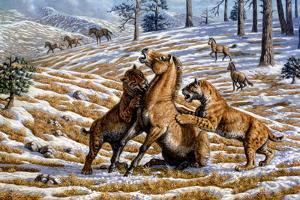 Scimitar Cats Attacking a Horse by Mauricio Anton
