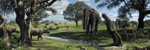 Wildlife of the Miocene Era, Artwork by Mauricio Anton