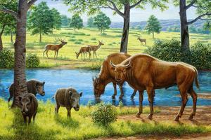 Wildlife of the Pleistocene Era by Mauricio Anton