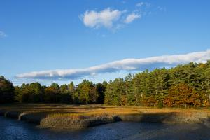 Evergreen Trees and Fall Colors Along South Freeport Cove, Maine by Mauricio Handler