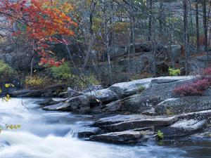 Fall Colors and a Waterfall in Mansfield Hollow State Park by Mauricio Handler