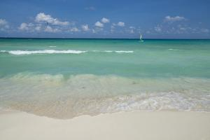 Waves Lap the Sandy Shore of Playa Del Carmen as a Boat Sails Near the Horizon by Mauricio Handler
