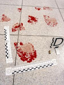 Recording Evidence by Mauro Fermariello