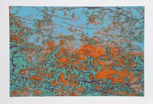 Coral Gem by Max Epstein