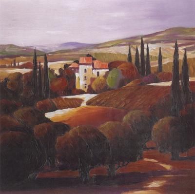 Villa in Tuscany by Max Hayslette