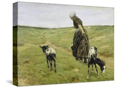 Woman with goats on the dunes. 1890