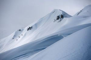 Snowy Peaks and Shadows by Max Lowe