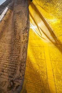 Sunlight Filters Through Prayer Flags by Max Lowe