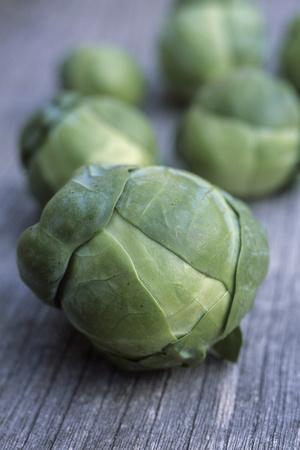 Brussels Sprouts (Brassica Oleracea)
