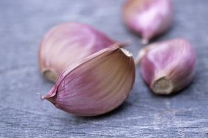 Garlic Cloves by Maxine Adcock