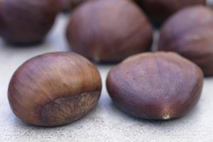 Sweet Chestnuts by Maxine Adcock