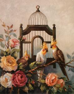 Cockatiel and Roses by Maxine Johnston