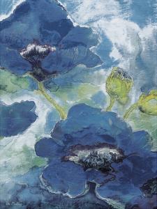 Aqua by May