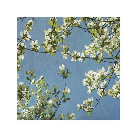May Fourth-Donna Geissler-Giclee Print