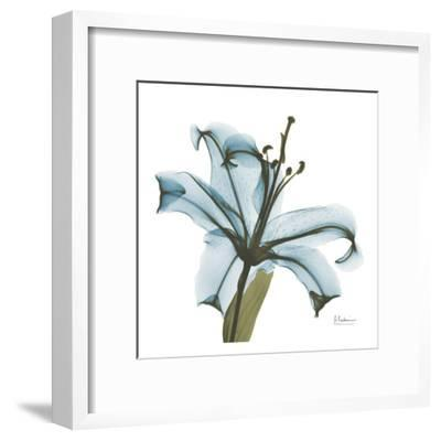 May Lily-Albert Koetsier-Framed Art Print