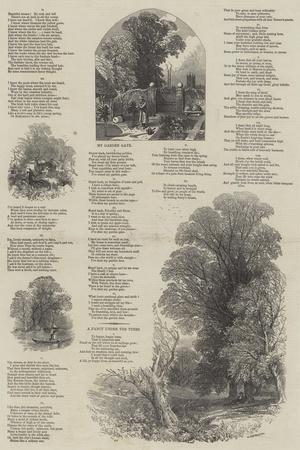 May Lyrics-Myles Birket Foster-Giclee Print