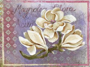 Magnolia by May May