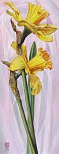 Two Yellow Daffodils by Maya Nishiyama