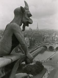 A Gargoyle Looking over the City of Paris by Maynard Owen Williams