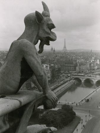 A Gargoyle Looking over the City of Paris