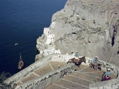 Donkeys Carry Visitors From the Ocean To the Hilltop Town of Thera