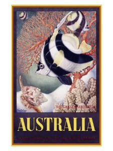 Australia Great Barrier Reef by Mayo