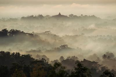 Colorful Sunrise over Borobudur Temple in Misty Jungle Forest, Indoneisa